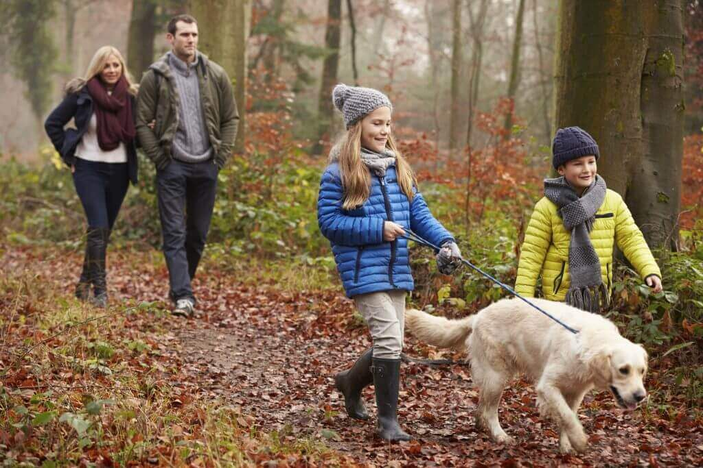 Family walking dog through the woods in the Lake District.