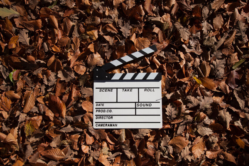 Autumn leaves and empty slate of films.